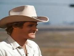Wild Dallas-Honey Wilder